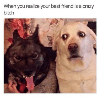 Best Friend, Ironic, and Best Friends: When you realize your best friend is a crazy  bitch Tag a crazy bitch