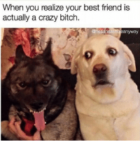 Best Friend, Drake, and Kardashians: When you realize your best friend is  actually a crazy bitch.  @hesanassholeanyway 😂😂😂 lmao - - - - - 420 memesdaily Relatable dank MarchMadness HoodJokes Hilarious Comedy HoodHumor ZeroChill Jokes Funny KanyeWest KimKardashian litasf KylieJenner JustinBieber Squad Crazy Omg Accurate Kardashians Epic bieber Weed TagSomeone hiphop trump ovo drake