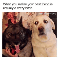 Memes, 🤖, and When You Realize: When you realize your best friend is  actually a crazy bitch.  Onesanassholeanyway -