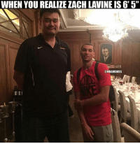 """Yao Ming is a monster. #Rockets Nation: WHEN YOU REALIZEZACHLAVINE IS 6' 5""""  @NBAMEMES Yao Ming is a monster. #Rockets Nation"""