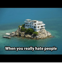 I am moving here because I hate you all, you cunts.: When you really hate people I am moving here because I hate you all, you cunts.