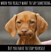#jussayin: WHEN YOU REALLY WANT TO SAY SOMETHING  BUT YOU HAVE TO STOP YOURSELF #jussayin