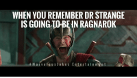 Life, Memes, and 🤖: WHEN YOU REMEMBER DR STRANGE  IS GOING  TO N RAGNAROK  M air ve Fo u s J o k e s E ntert a i n men t My life is complete. MarvelousJokes