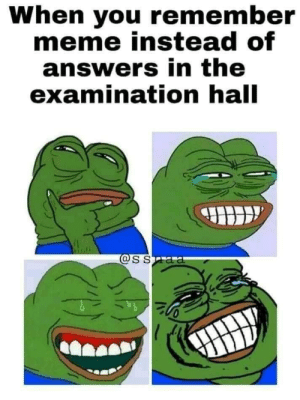 Examination: When you remember  meme instead of  answers in the  examination hall  @SSaa