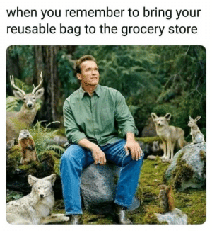me irl by KABAR_in_the_gay_bar FOLLOW HERE 4 MORE MEMES.: when you remember to bring your  reusable bag to the grocery store me irl by KABAR_in_the_gay_bar FOLLOW HERE 4 MORE MEMES.