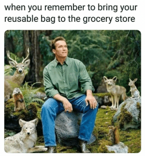 Dank, Memes, and Target: when you remember to bring your  reusable bag to the grocery store Meirl by Latricc FOLLOW HERE 4 MORE MEMES.