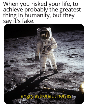 Fake, Life, and Dank Memes: When you risked your life, to  achieve probably the greatest  thing in humanity, but they  say it's fake.  angry astronaut noises It happened