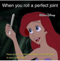Life, Weed, and Marijuana: When you roll a perfect joint  EEDISNEO  n anything so wonderful  Have you ever see  in your entire life? Scuttle will know what to do with it! 😂 @weeddisney
