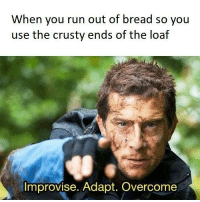Bear Grylls? More like Bear Toasts.  You need your required daily intake of memes! Follow @nochillmemes for help now!: When you run out of bread so you  use the crusty ends of the loaf  Improvise. Adapt. Overcome Bear Grylls? More like Bear Toasts.  You need your required daily intake of memes! Follow @nochillmemes for help now!