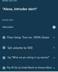 "Pentagon level security: WHEN YOU SAY  ""Alexa, intruder alert""  ALEXA WILL  Add action  1  e Floor lamp: Turn on, 100% Green  Set volume to 100  Say ""What are you doing in my swamp?"" -  l Star by Smash Mouth on Amazon Music- Pentagon level security"