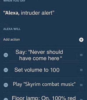 "Anaconda, Dank, and Memes: WHEN YOU SAY  ""Alexa, intruder alert""  ALEXA WILL  Add action  Say: ""Never should  have come here""  e  Set volume to 100  e Play ""Skyrim combat music-  Floor lamp: On, 100% red me irl by Stackso MORE MEMES"