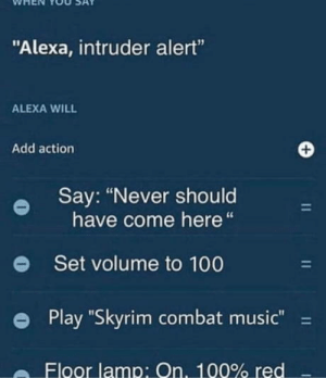 "Anaconda, Music, and Skyrim: WHEN YOU SAY  ""Alexa, intruder alert""  ALEXA WILL  Add action  Say: ""Never should  have come here""  Set volume to 100  Play ""Skyrim combat music""-  e  Floor lamp: On, 100% red This is why we cant have nice things"