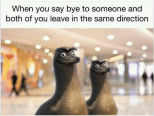 Friday, Memes, and Mega: When you say bye to someone and  both of you leave in the same direction 40 Mega Memes for Your Friday #memes
