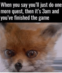 I have seen everything. 😌: When you say you'll just do one  more quest, then it's 3am and  you've finished the game I have seen everything. 😌