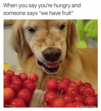 "Funny, Hungry, and Memes: When you say you're hungry and  someone says ""we have fruit""  e Ownage Pranks But I want a burger 😂  Like Ownage Pranks for MORE funny pics!"