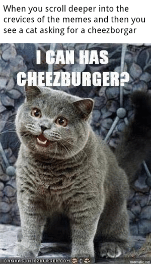 Memes, Reddit, and Asking: When you scroll deeper into the  crevices of the memes and then you  see a cat asking for a cheezborgar  I CAN HAS  CHEEZBURGER?  0CANHASCHEE2EURGERCOM  mematic.net What year is it?!