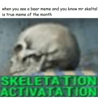 me irl: when you see a bear meme and you know mr skeltal  is true meme of the month  SKELETATIO  ACTIVATATION me irl