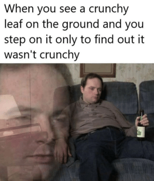 Nothing left but disappointment.: When you see a crunchy  leaf on the ground and you  step on it only to find out it  wasn't crunchy Nothing left but disappointment.