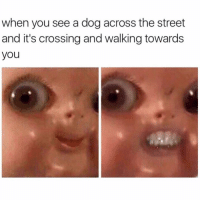 Dogs, Streets, and Cross: when you see a dog across the street  and it's crossing and walking towards  you When I meet someone that doesn't like animals it's like ya that's cool I respect your opinion but also you're a terrible person and please never speak to me again.