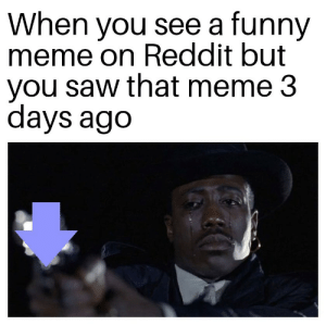 It had to be done: When you see a funny  meme on Reddit but  you saw that meme 3  days ago It had to be done