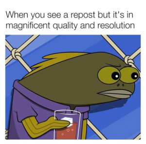 This is probably a repost. by Angery_Neeson52 FOLLOW 4 MORE MEMES.: When you see a  magnificent quality and resolution  repost but it's in This is probably a repost. by Angery_Neeson52 FOLLOW 4 MORE MEMES.