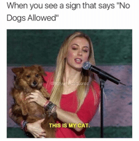 """Well in that case, come on in. @hollywoodsquares: When you see a sign that says """"No  Dogs Allowed""""  THIS IS MY CAT. Well in that case, come on in. @hollywoodsquares"""