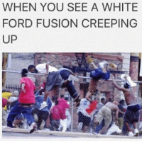 Nigga a bitch for killing himself 😂 he could've just called Lester and remove the police 😴👌🏽: WHEN YOU SEE A WHITE  FORD FUSION CREEPING  UP Nigga a bitch for killing himself 😂 he could've just called Lester and remove the police 😴👌🏽