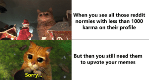 Deep apologies: When you see all those reddit  normies with less than 1000  karma on their profile  But then you still need them  to upvote your memes  Sorry... Deep apologies