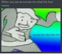 excuse me: When you see an excuse me what the fuck  meme.  excuse me what the fuck