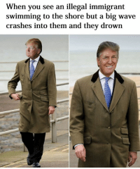 Illegal Memes: When you see an illegal immigrant  swimming to the shore but a big wave  crashes into them and they drown