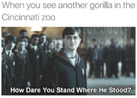 Just when I thought it was over....  Like MrTechnicalDifficult: When you see another gorilla in the  Cincinnati Zoo  How Dare You Stand Where He Stood? Just when I thought it was over....  Like MrTechnicalDifficult