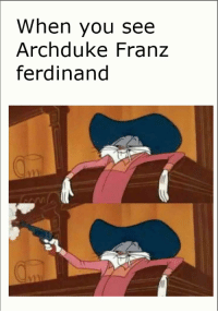 Archduke Franz Ferdinand being assassinated by Gavrilo Princip, 1914 (colourized): When you see  Archduke Franz  ferdinand Archduke Franz Ferdinand being assassinated by Gavrilo Princip, 1914 (colourized)