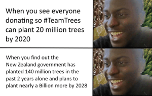 Go New Zealand: When you see everyone  donating so #TeamTrees  can plant 20 million trees  by 2020  When you find out the  New Zealand government has  planted 140 million trees in the  past 2 years alone and plans to  plant nearly a Billion more by 2028 Go New Zealand