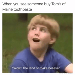 "Memes, Wow, and Maine: When you see someone buy Tom's of  Maine toothpaste  ""Wow! The land of make believe""  MADE WITH MOMUS Wish I could be...part of your world 🧜🏻‍♀️"