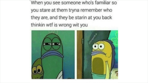 Wtf, MeIRL, and Back: When you see someone who's familiar so  you stare at them tryna remember who  they are, and they be starin at you back  thinkin wtf is wrong wit you Meirl