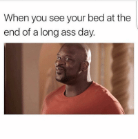 Memes, 🤖, and Long Ass: When you see your bed at the  end of a long ass day Nothing more exciting galdembanter dt @itsshenell uberCode:SHENG6