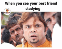 When You See Your Best Friend: When you see your best friend  studying