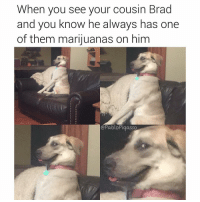 Memes, 🤖, and Him: When you see your cousin Brad  and you know he always has one  of them marijuanas on him  ePabloPiqasso SEND IT BRADLEY