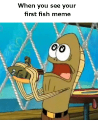 Fred_IRL: When you see your  first fish meme  OG Fred_IRL