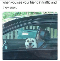 Memes, Traffic, and 🤖: when you see your friend in traffic and  they see u Oh haiii @thespeckyblonde 😁 Follow @thespeckyblonde @thespeckyblonde @thespeckyblonde