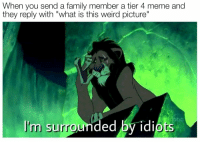 "Family, Meme, and Memes: When you send a family member a tier 4 meme and  they reply with ""what is this weird picture""  I'm surrounded by idiots <p>Invest in Scar memes! via /r/MemeEconomy <a href=""https://ift.tt/2O4PZzW"">https://ift.tt/2O4PZzW</a></p>"