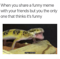 When you share a funny meme  with your friends but you the only  one that thinks it's funny  TAngry Screech]