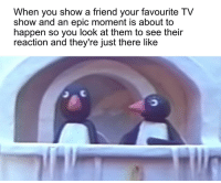 Dude, Reddit, and Epic: When you show a friend your favourite TV  show and an epic moment is about to  happen so you look at them to see their  reaction and they re just there like