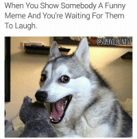 Shit be so damn stressful 😂😂😂😂 LMMFAO memelife YouBetterLaugh or imabeatyoass memelife supervillain909: When You Show Somebody A Funny  Meme And You're Waiting For Them  To Laugh  OSUPERVILLAINNON Shit be so damn stressful 😂😂😂😂 LMMFAO memelife YouBetterLaugh or imabeatyoass memelife supervillain909