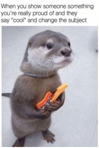 """Memes, Cool, and Http: When you show someone something  you're really proud of and they  say """"cool"""" and change the subject <p>Are there any otter otter lovers here? via /r/memes <a href=""""http://ift.tt/2EvjgxV"""">http://ift.tt/2EvjgxV</a></p>"""
