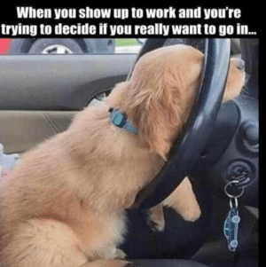 Memes, Work, and The Weekend: When you show up to Work and youre  trying to decide if you really want to go in... How close are we to the weekend?