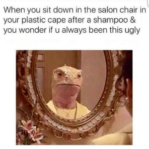 Ugly, Salon, and Chair: When you sit down in the salon chair in  your plastic cape after a shampoo &  you wonder if u always been this ugly Meirl
