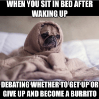 🙃 RP @smokememesdaily: WHEN YOU SIT IN BEDAFTER  WAKING UP  DEBATING WHETHERTOGET UPTOR  GIVE UP AND BECOME A BURRITO 🙃 RP @smokememesdaily