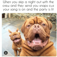 OOHHMMYYGGOODD @teet954 your song is on!!!!! Get your ass out right now and come dance with us!!! We miss you!!!! Meme-pic inspired by my boo @teet954 @teet954 😂💗🎉: When you skip a night out with the  crew and they send you snaps cuz  your song is on and the party is lit OOHHMMYYGGOODD @teet954 your song is on!!!!! Get your ass out right now and come dance with us!!! We miss you!!!! Meme-pic inspired by my boo @teet954 @teet954 😂💗🎉