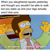 Memes, Nature, and Squat: When you slaughtered squats yesterday  and thought you wouldn't be able to walk  but you wake up and your legs actually  aren't that sore  @squat bench:deadlift  I am nature s greatesttmiracle! 🌈